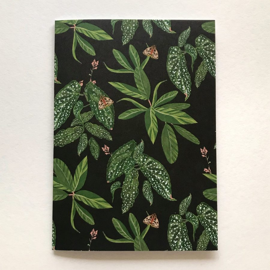 Moth and Plants greeting card hollie kelley